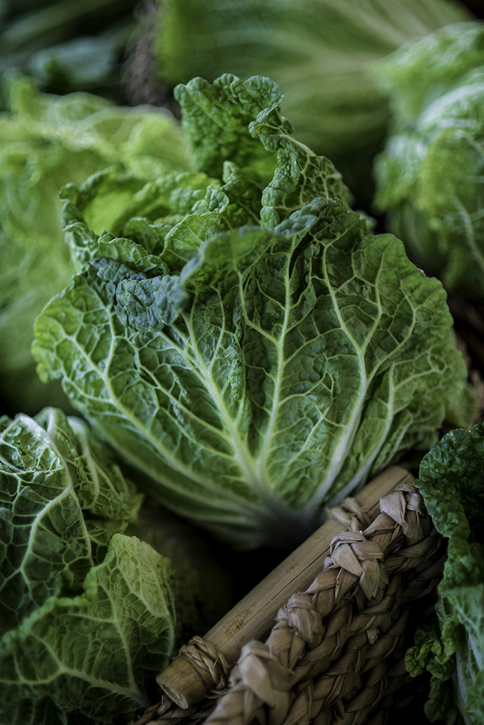 Cabbage from Salvaterra's Gardens, photographed by Adam Atkinson
