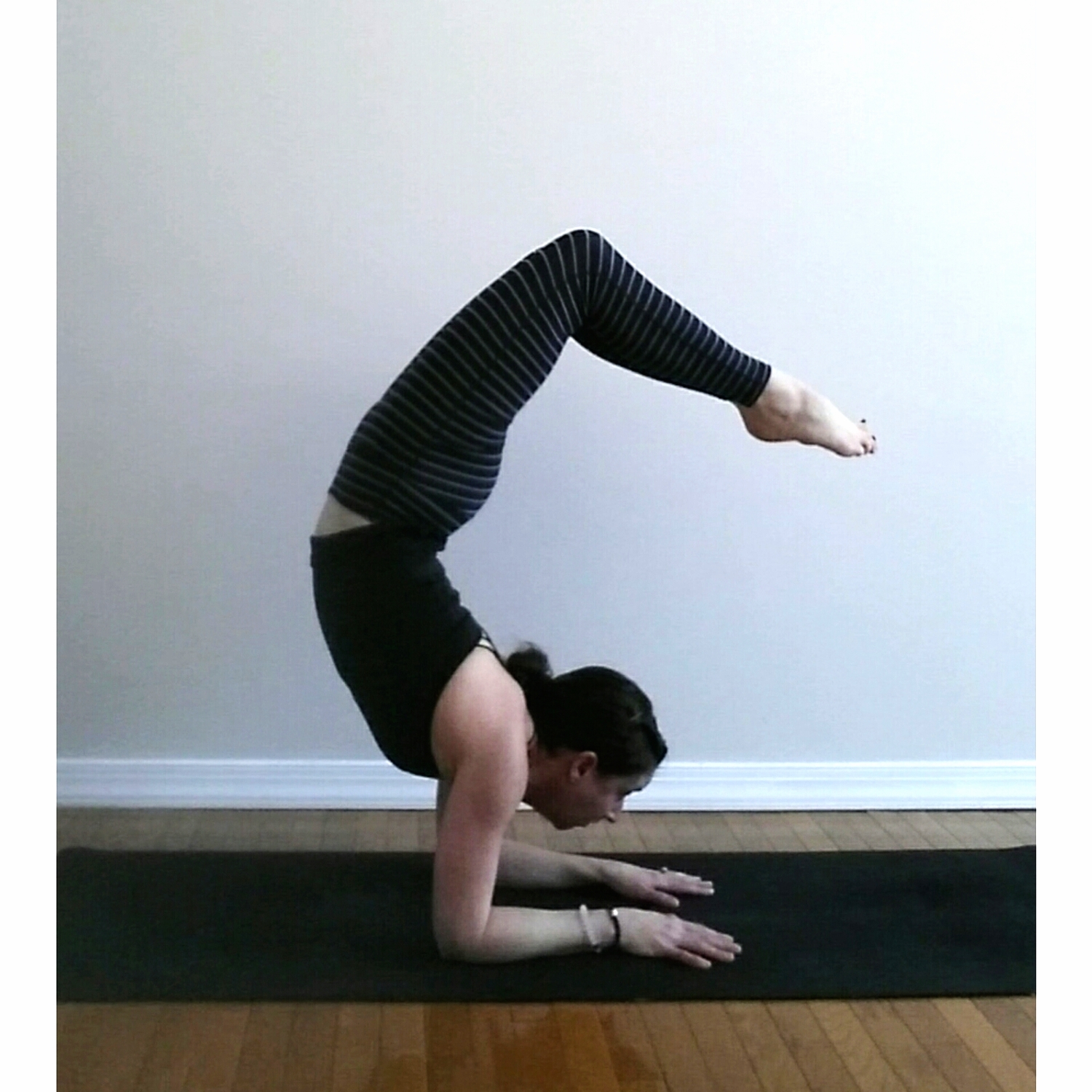 Jess Dellmyer-Yusko, one of the amazing people I practice with regularly, in pincha scorpion.