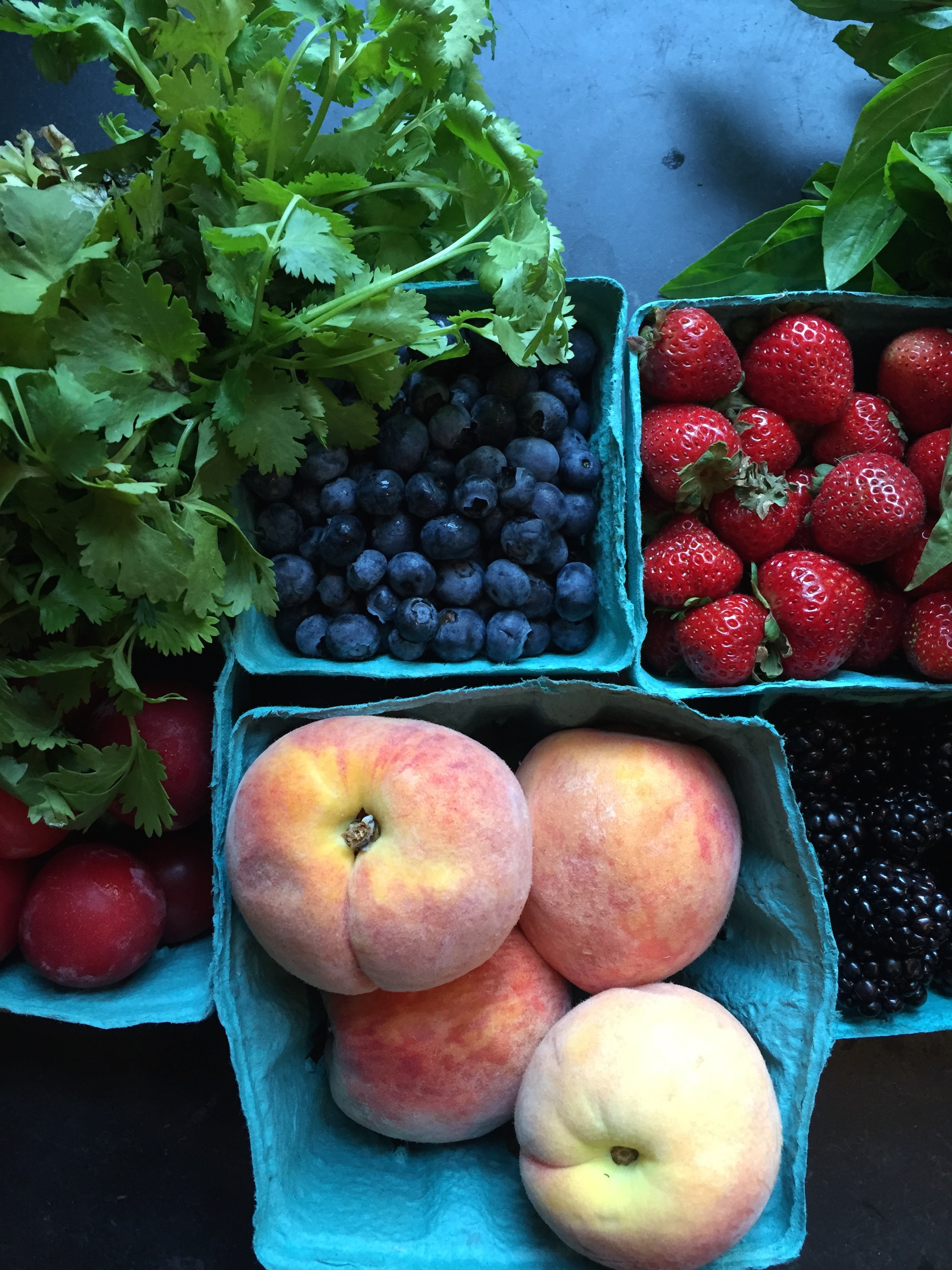 Cilantro, blueberries, everbearing strawberries, blackberries, basil, peaches and plums.