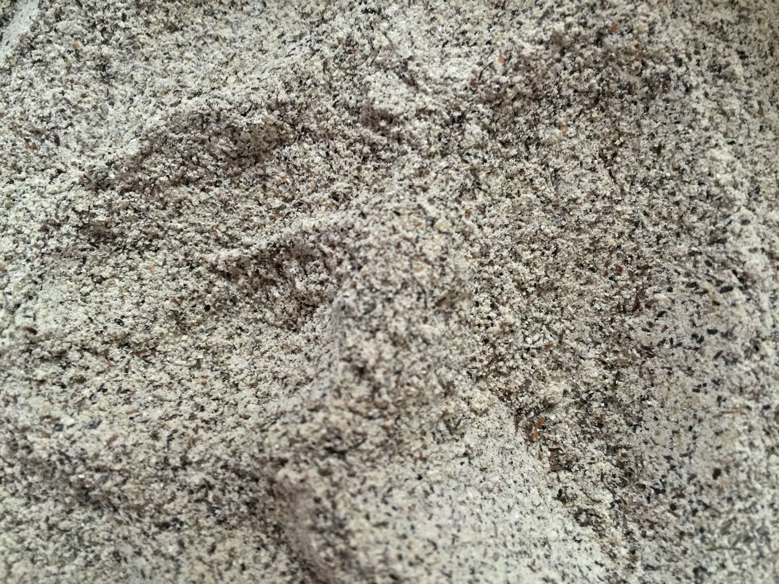 Nope, that's not beach sand. It's buckwheat flour from the Easton Public Market.