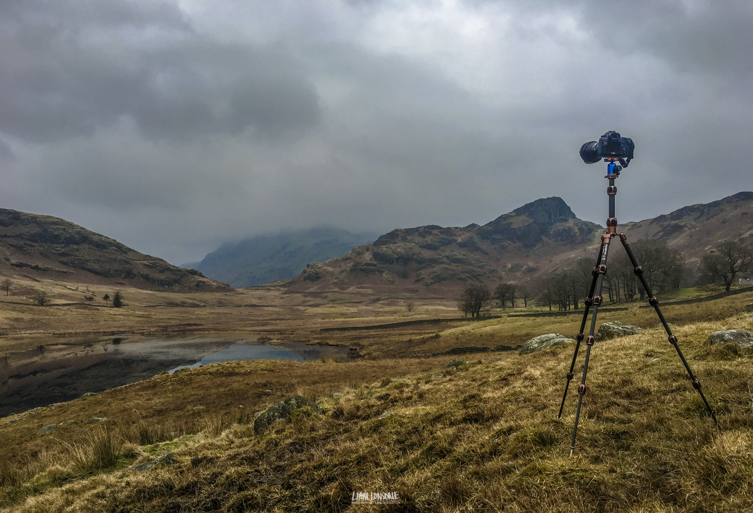 LEO on his first outing, to Blea Tarn - Langdale. © L LONSDALE 2017