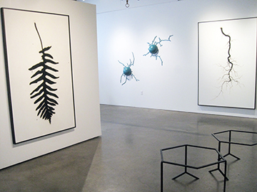 Brian Borrello Installation 2016_0323 copy.jpg