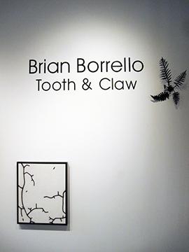 Brian Borrello Installation 2016_0328 copy.jpg