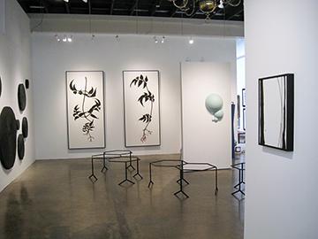 Brian Borrello TOOTH & CLAW installation_0347 copy.jpg