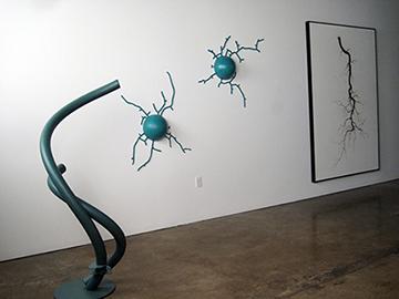 Brian Borrello TOOTH & CLAW installation_0379 copy.jpg