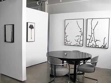 Brian Borrello TOOTH & CLAW installation_0375 copy.jpg