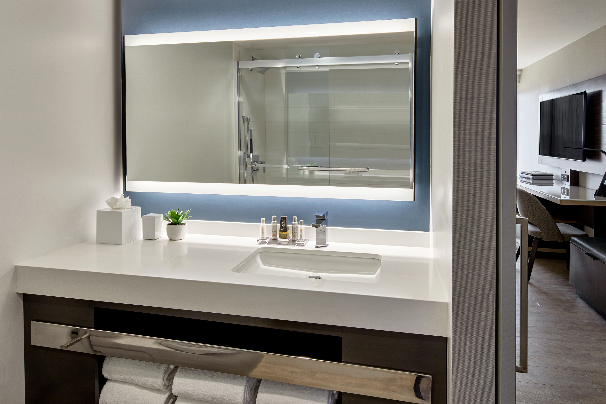 2018 Model Room  Bathroom