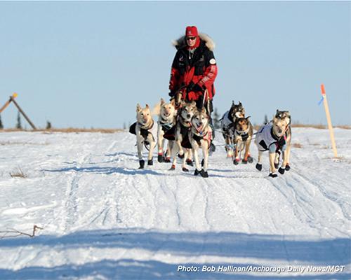 Photo: Bob Hallienen   Anchorage Daily News   MCT