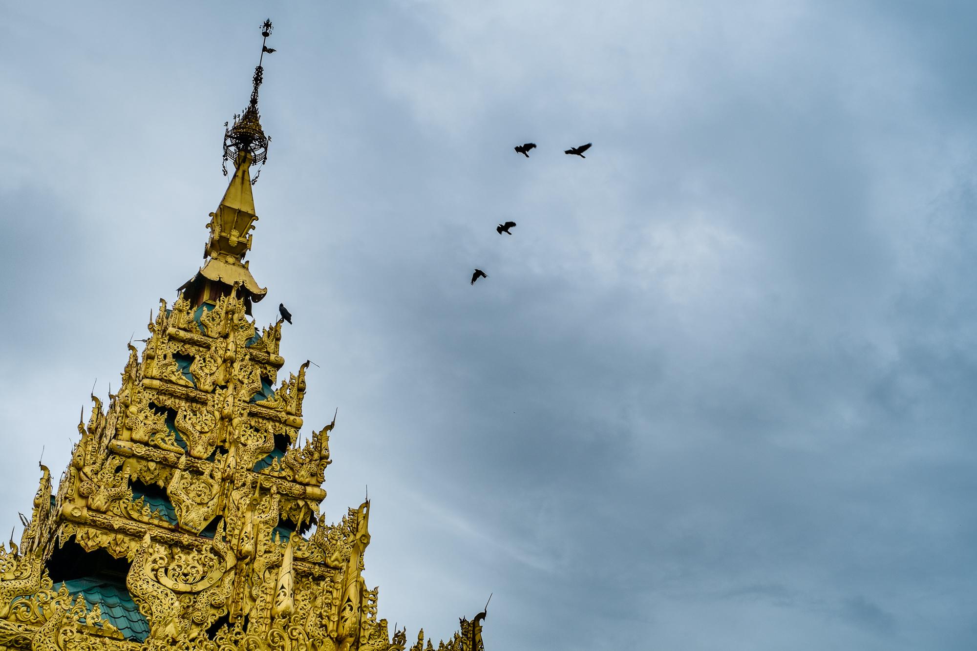 Myanmar_6897_2015_07.jpg