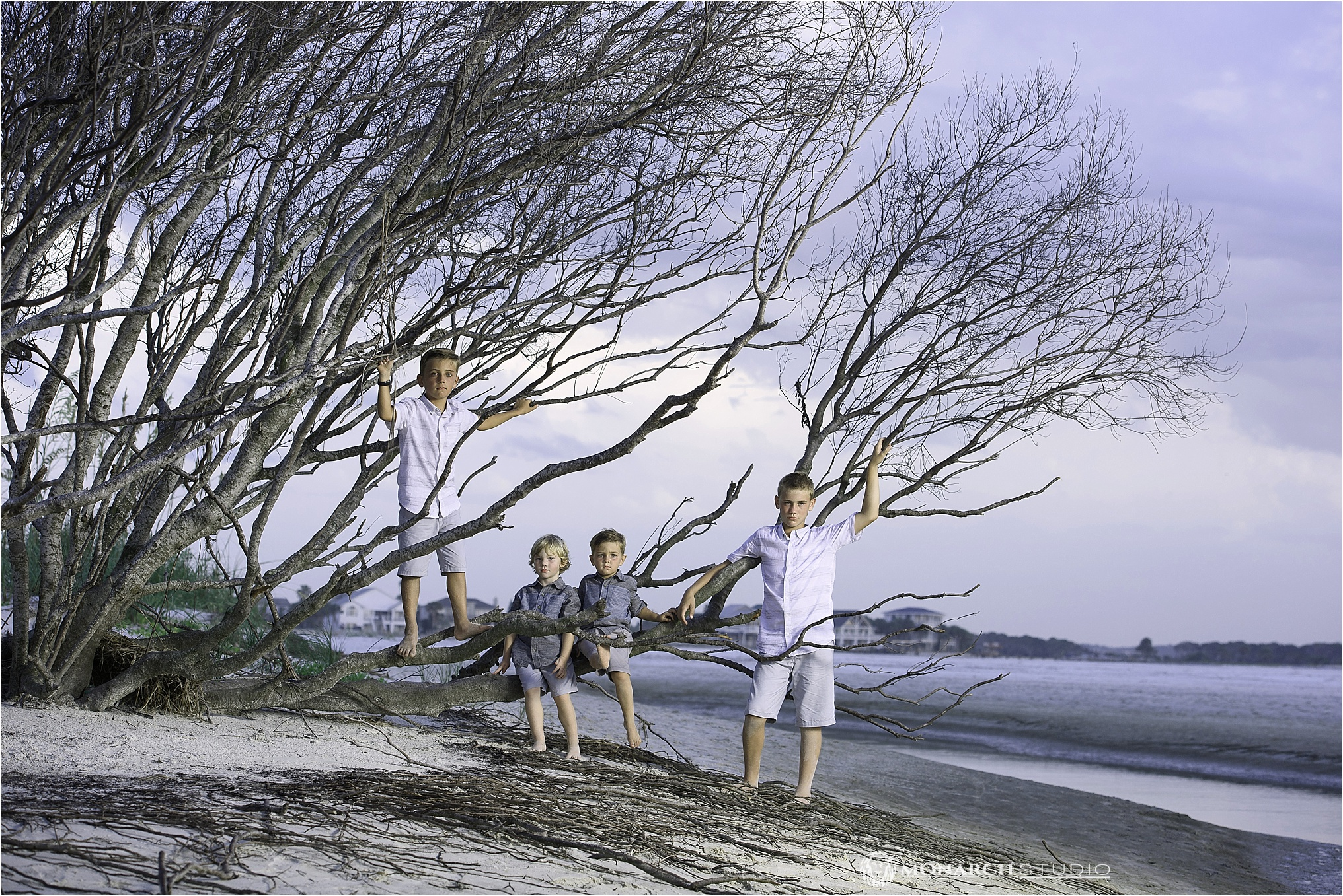 First cousins share a tree lining the Matanzas Inlet