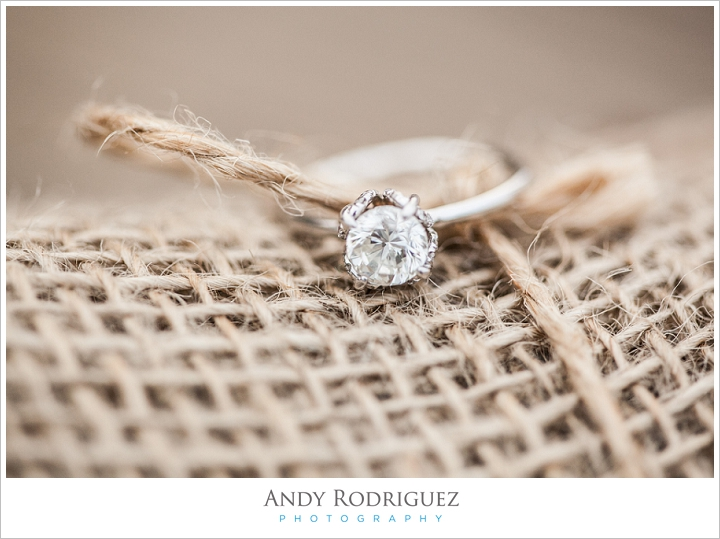 talbert-regional-park-engagement-photos_0007.jpg