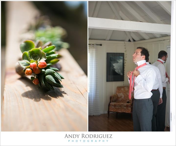 big-sur-wedding-point-16_0015.jpg