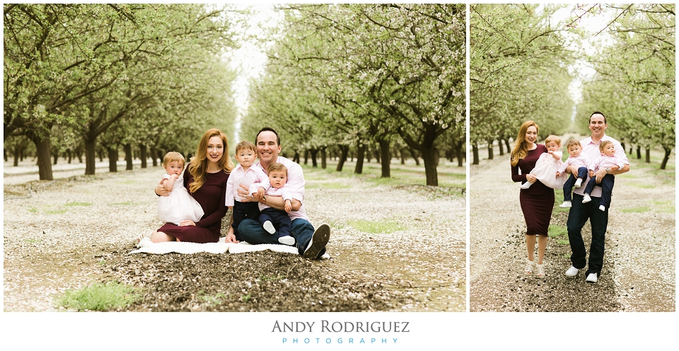 Family Photo in Almond Orchard