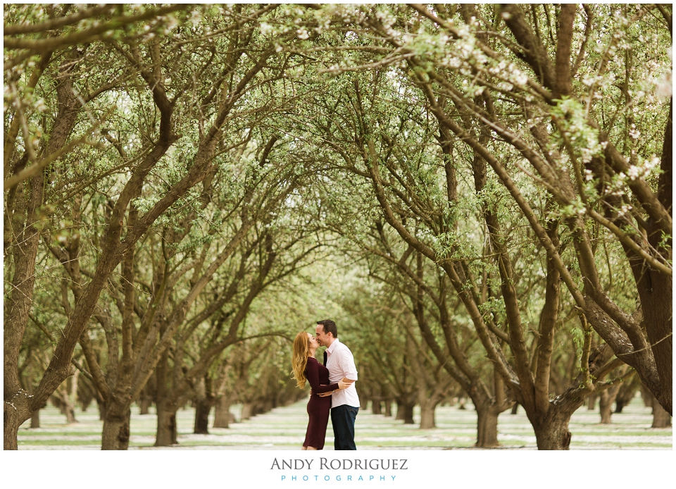 Couple under tree canopy