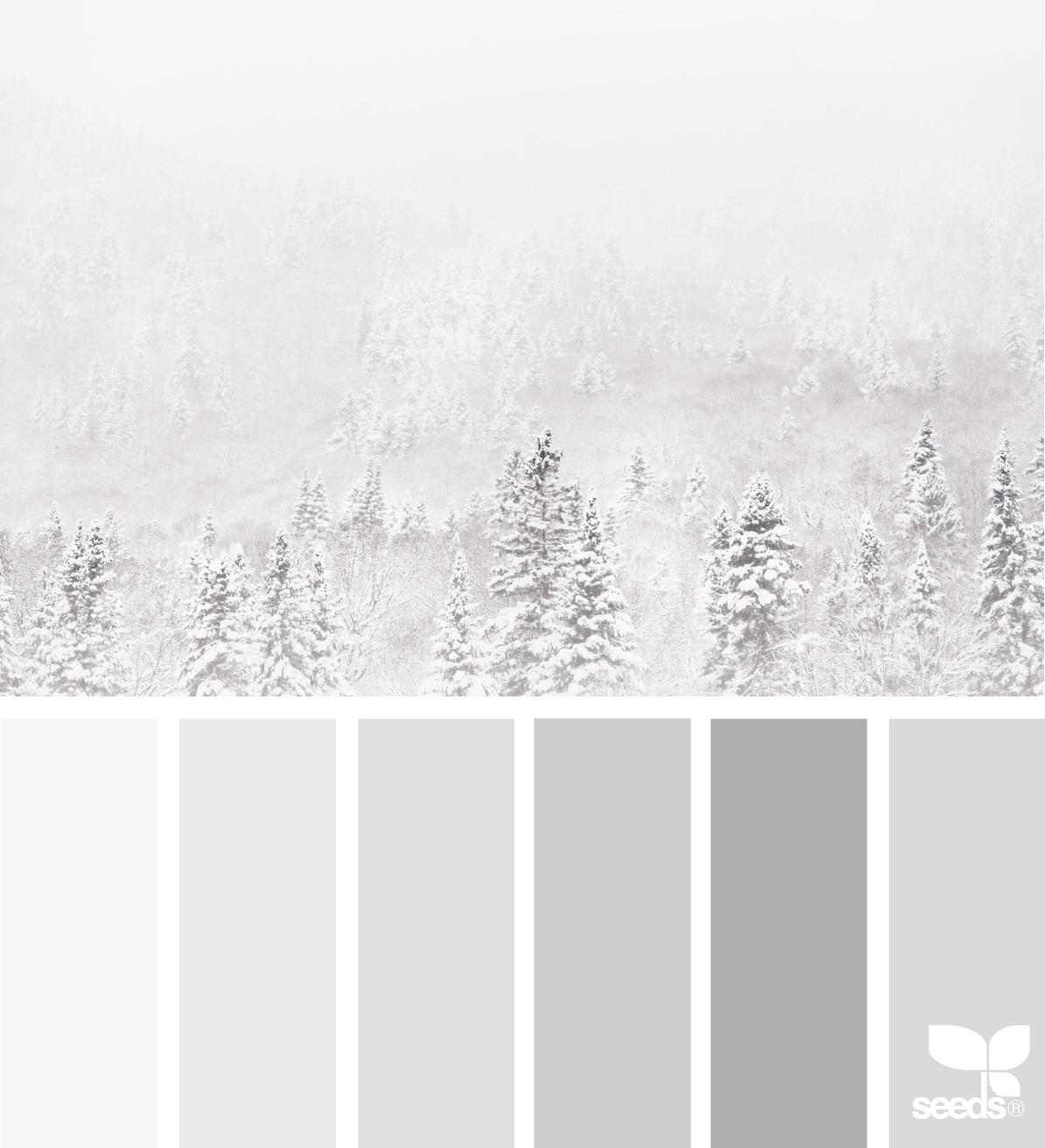 monochromatic color scheme.png