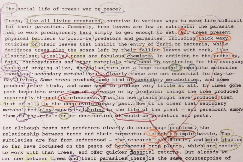Epigenetic_Poetry_webres00008.jpg