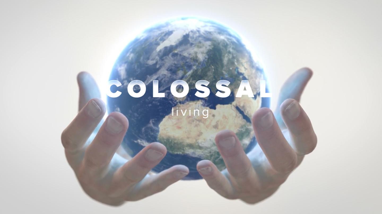 Colossal_1440x880 YV-clr.jpg