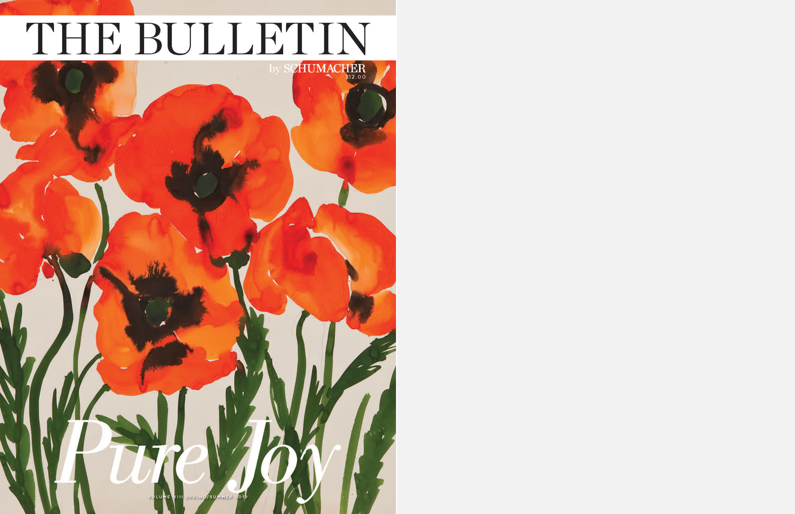 19-SP-Bulletin-cover.jpg
