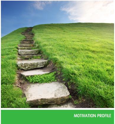 Genos Employee Motivation Assessment
