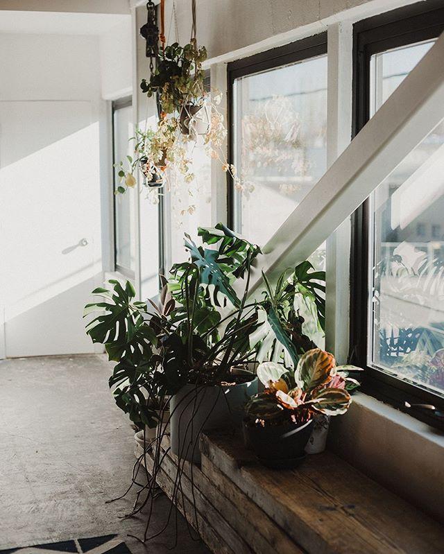 Here's a little sunshine for a rainy day ☀️ No matter what the occasion, our loft always has the vibes✨  #unionpine #portlandeventspace #pdxevents #portlandweddingvenue #pdxworkshop #officeforaday #theloftatunionpine 📷: @alixann_loosle_photography
