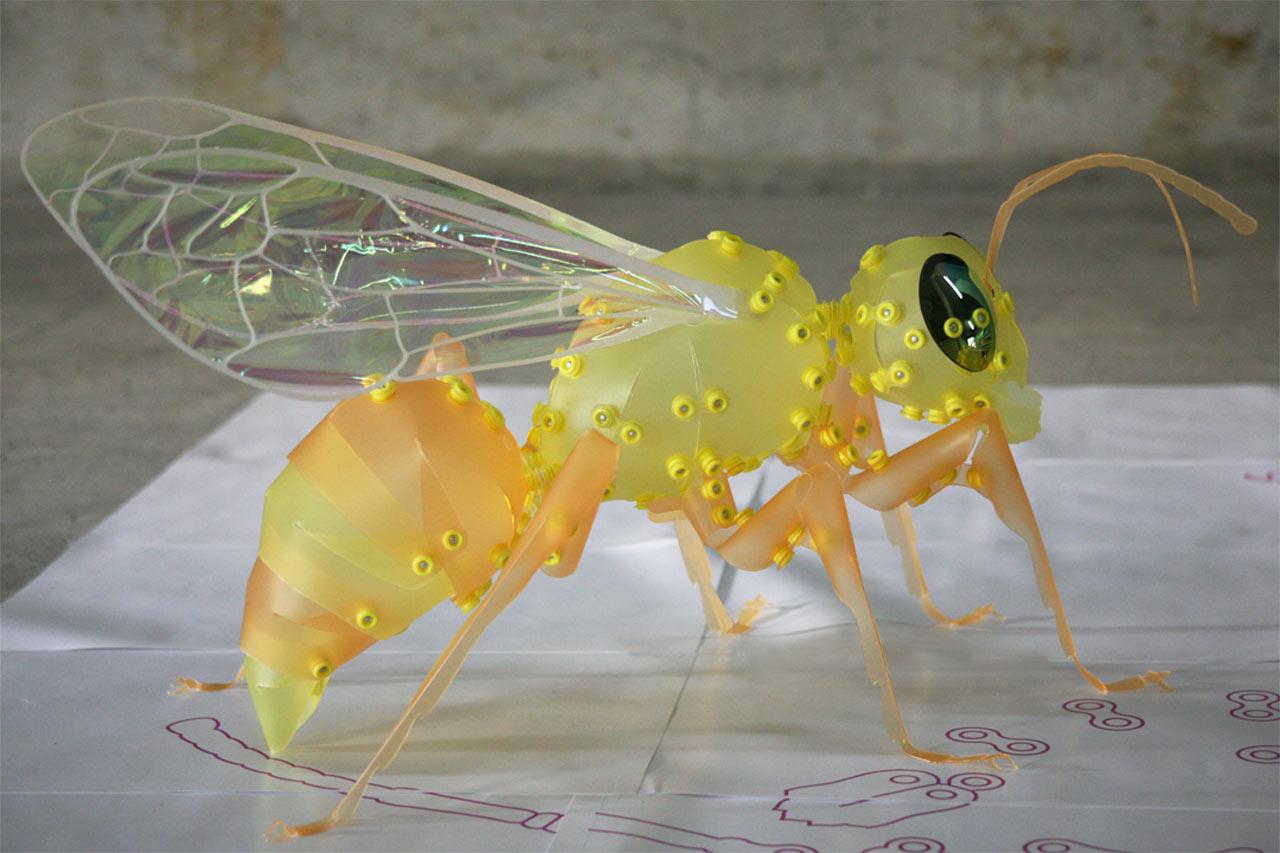 Wasp_1.jpg