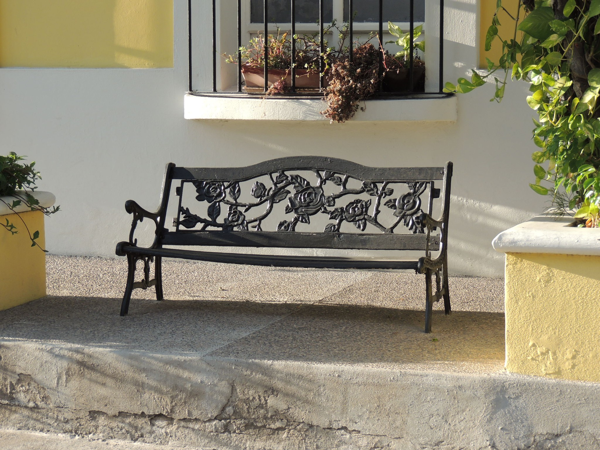 lone bench in mazatlan