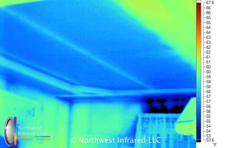 Infrared-Unusual8.missing-insulation-in-ceiling.jpg