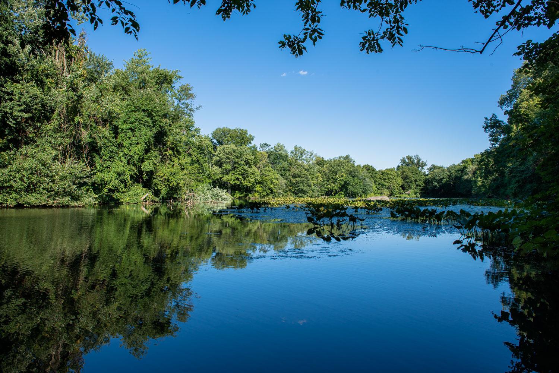 Larchmont Reservoir, Larchmont