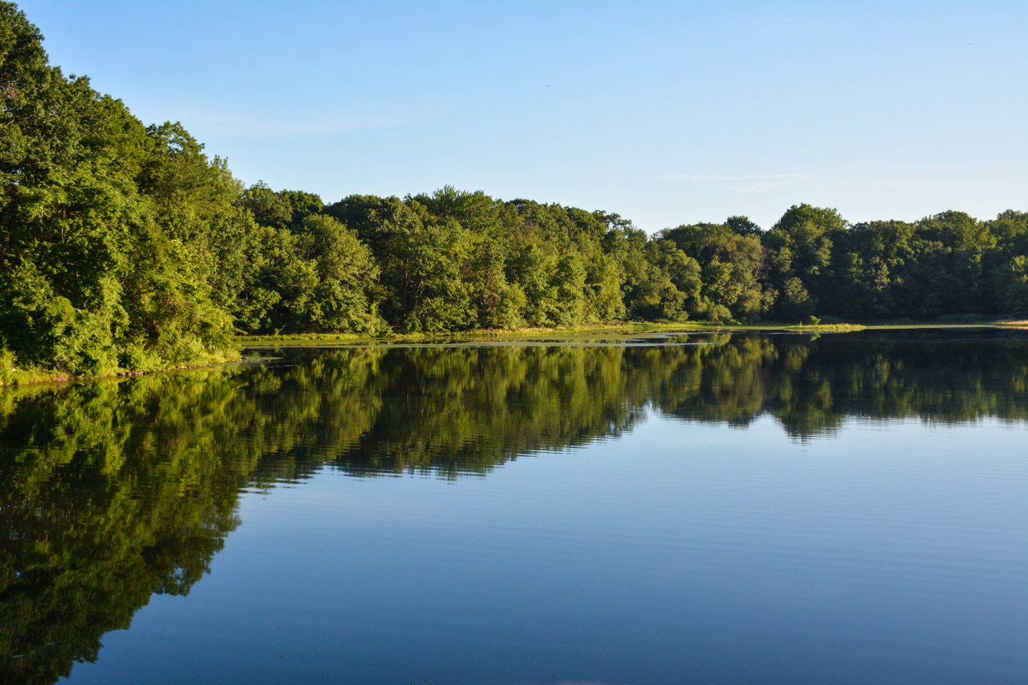 Twin Lakes Park, Eastchester