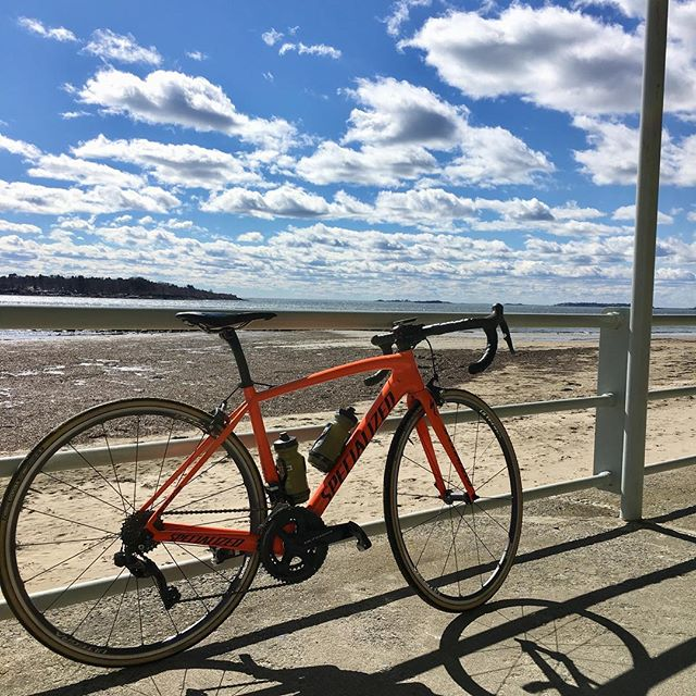 I am flawed if I'm not free. ☀️❤️🚴‍♀️ _ #wheremybiketakesme #cyclesmart #bikes #beach #whatsworthit