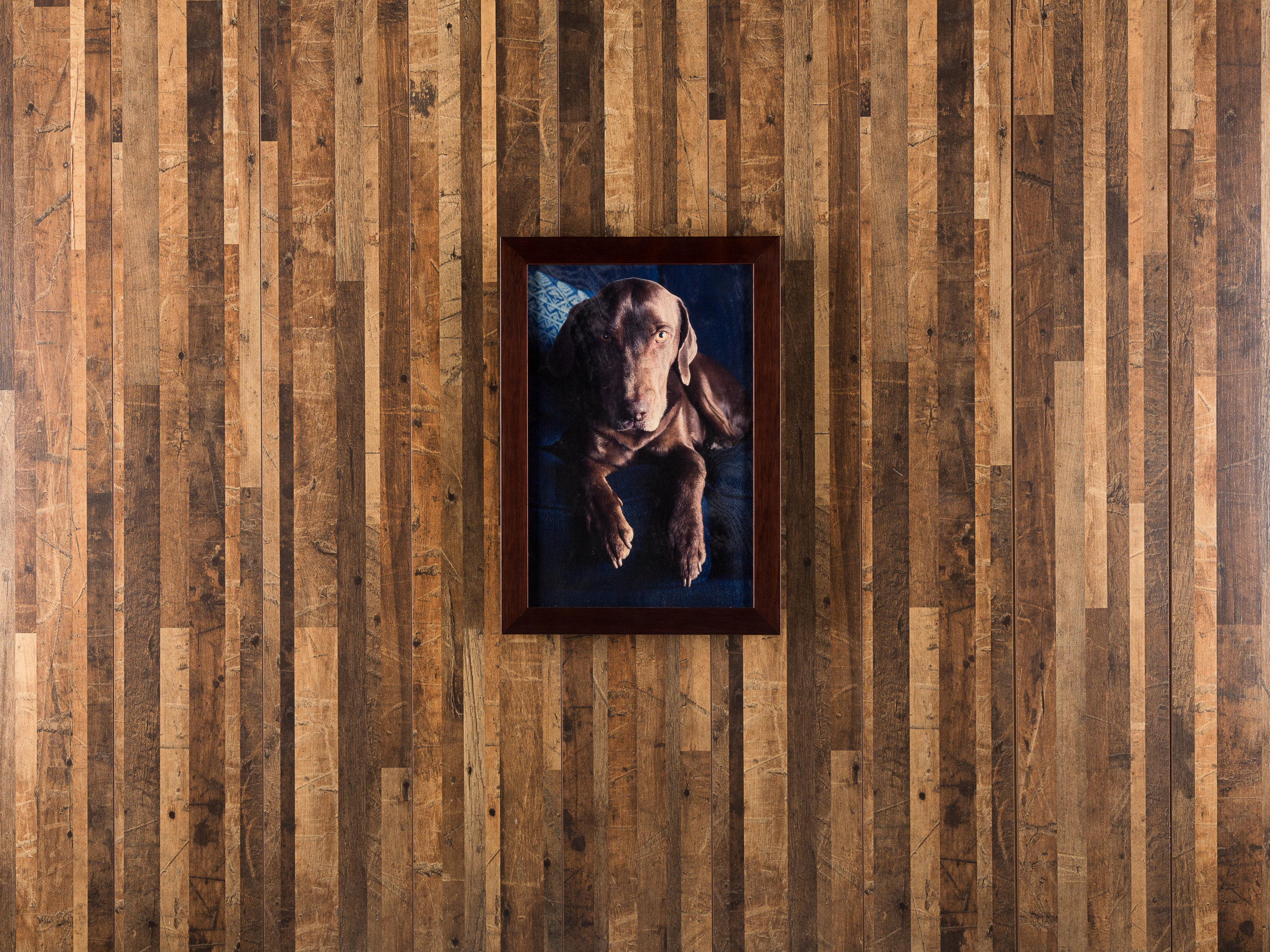 """Pictured here: 8x12"""" Framed wooden print."""