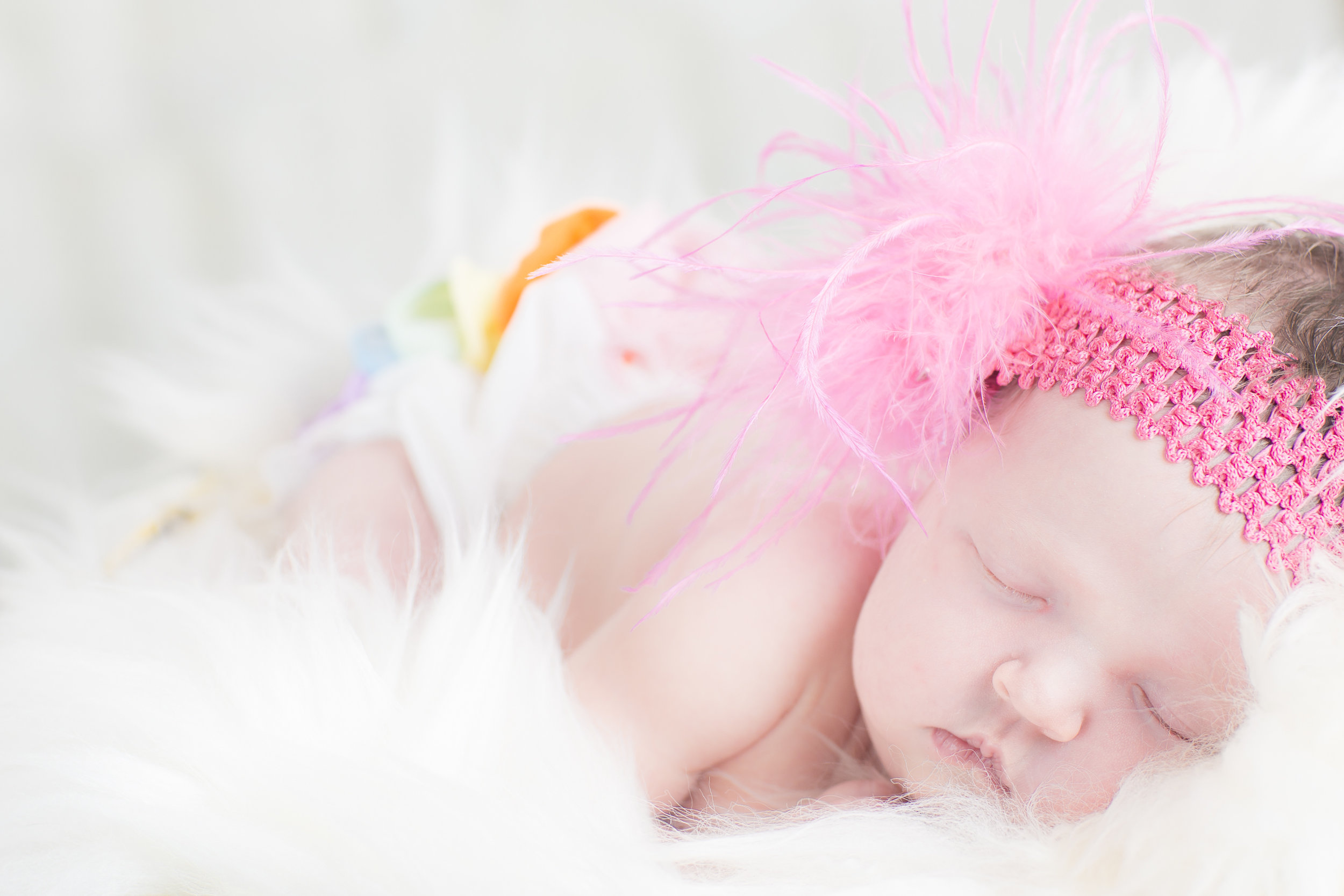 07 newborn girl rainbow pink feather headband fur rug basket studio photography session 2.jpg