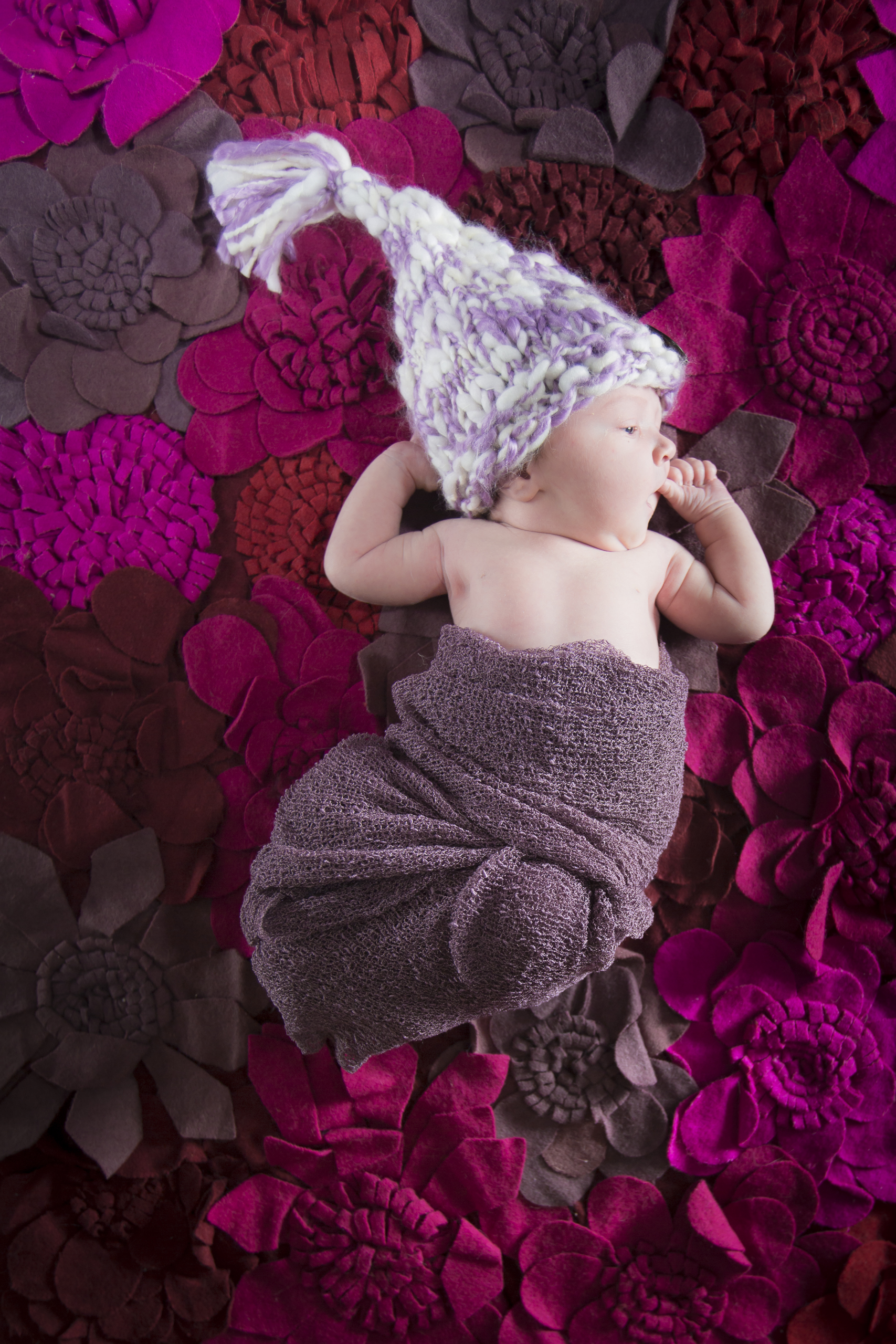 09 newborn girl purple swaddle knit hat flower felt rug studio photography session 2.jpg
