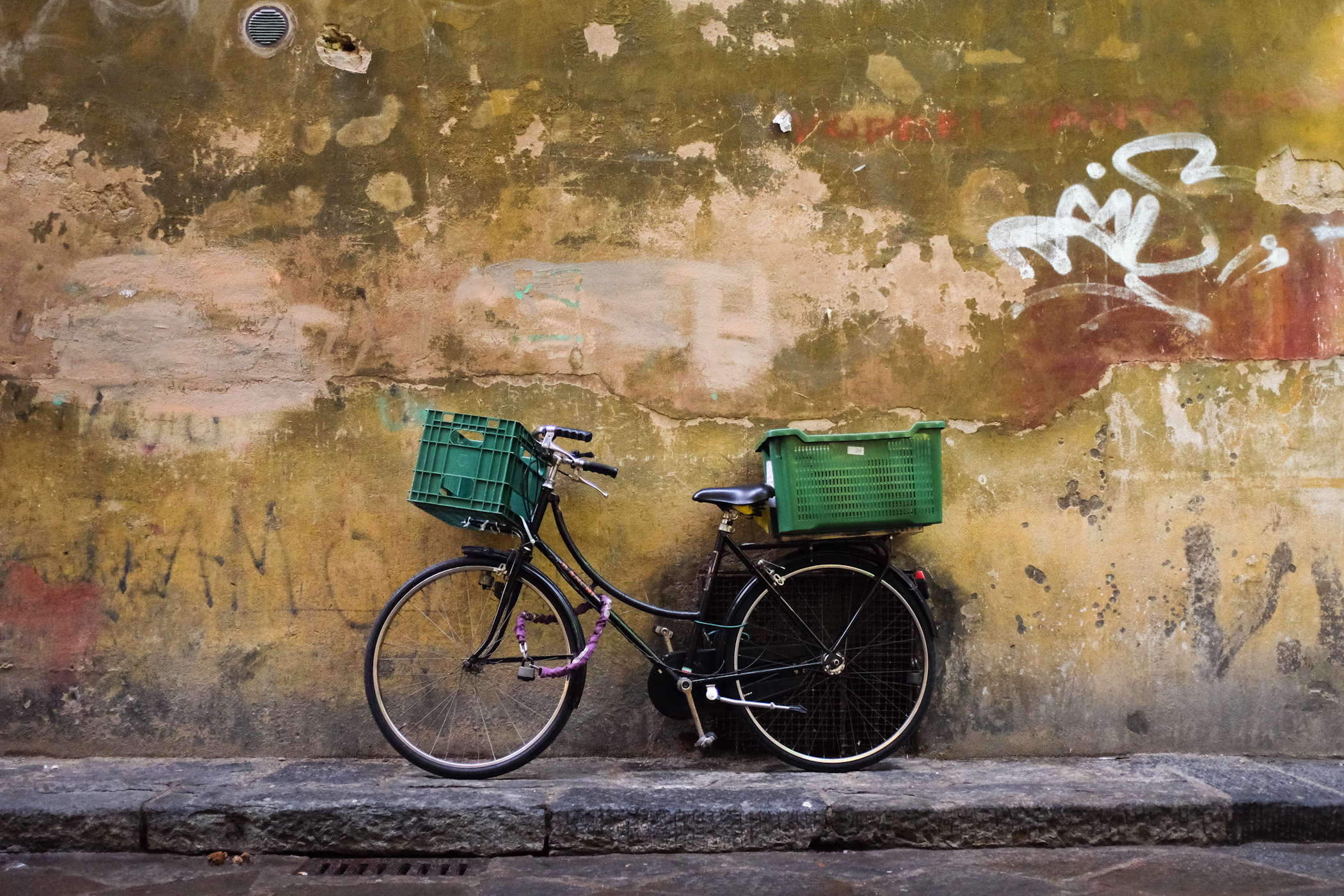 palermo bicicletti di firenze jan15-5.jpg