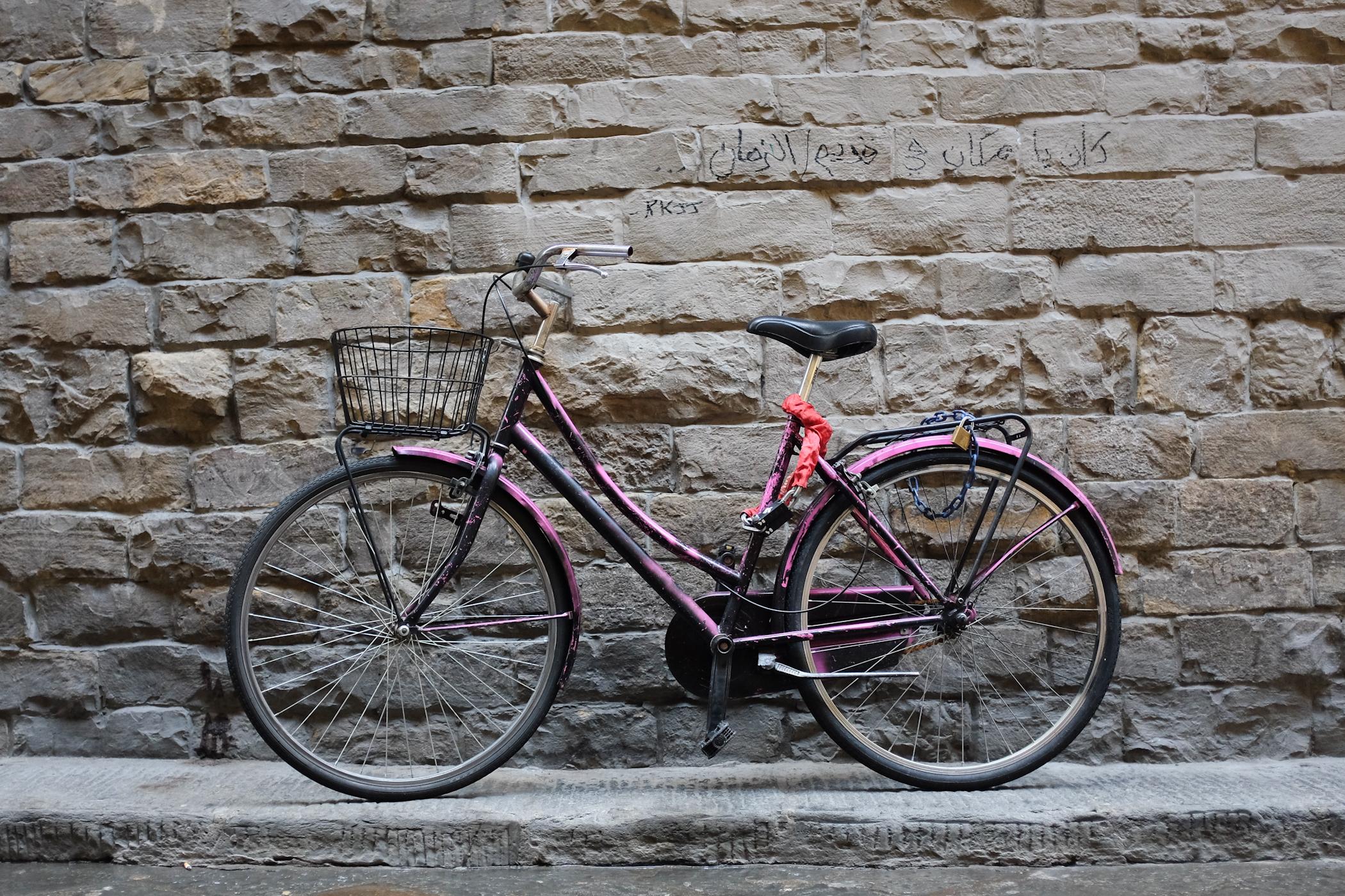 palermo bicicletti di firenze jan15-9.jpg