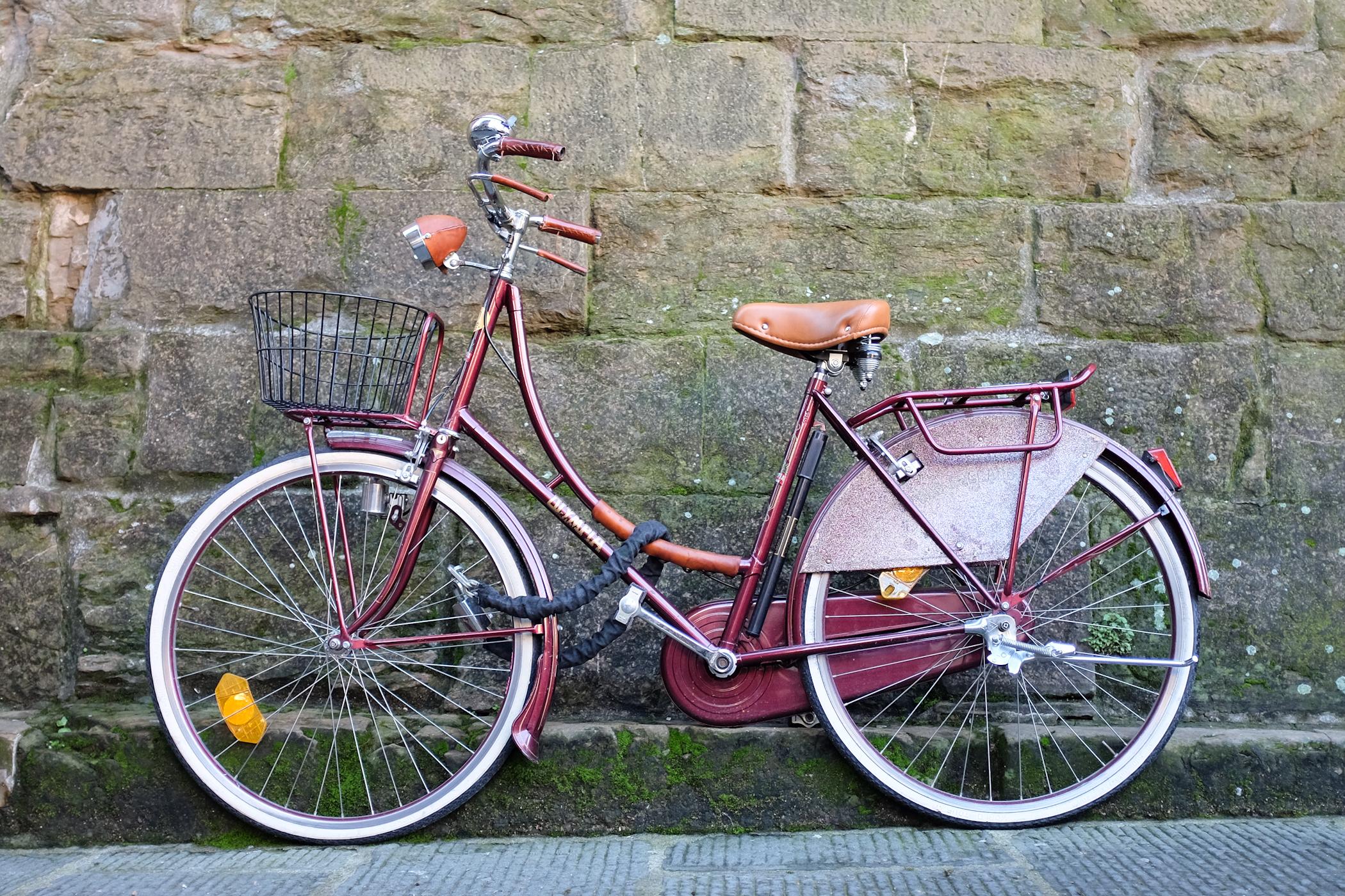 palermo bicicletti di firenze jan15-21.jpg