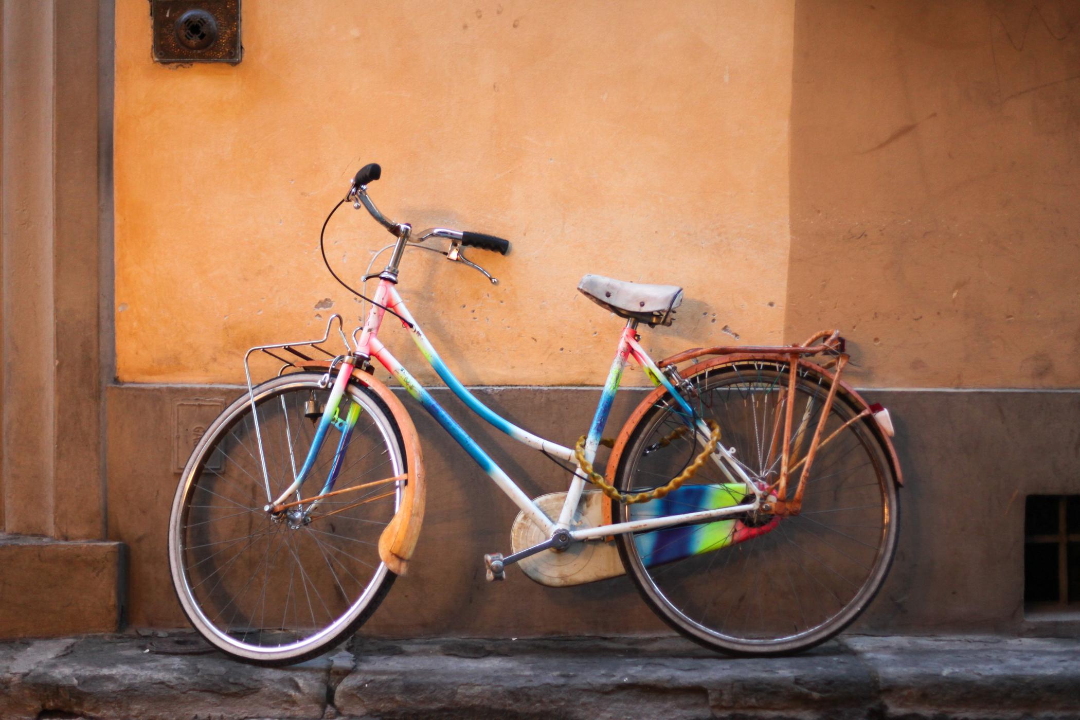 palermo bicicletti di firenze jan15-27.jpg