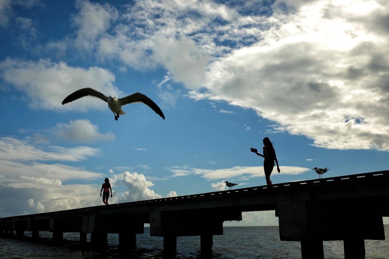 palermo travel key west flying gull.jpg