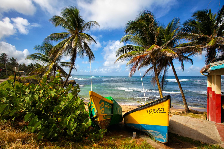 palermo barbados boats.jpg
