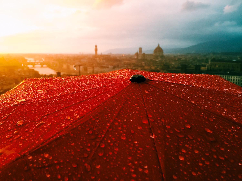 cp red umbrella michelangelo.jpg