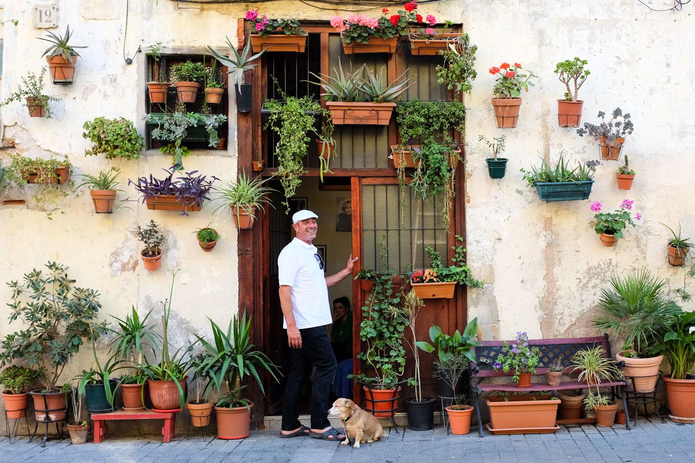cp barcelona flower wall web.jpg