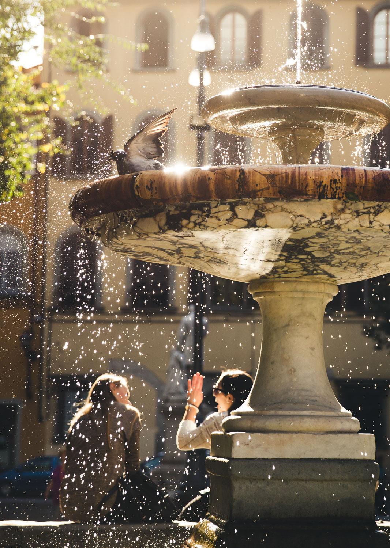 cp firenze bird fountain 2016 site.jpg