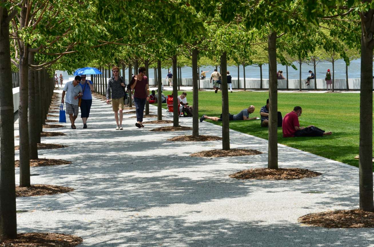 Park visitors enjoying the sun on the lawn and the shade beneath the Littleleaf Lindens.