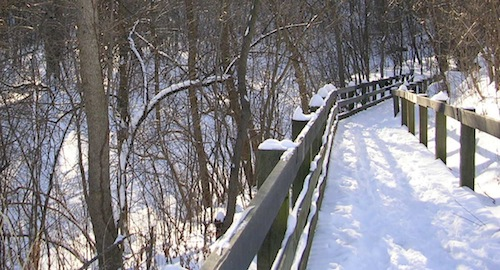 Dana Gioia - Prayer at Winter Solstice.jpg