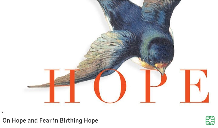 759. On Birthing Hope in Birthing Hope.jpg
