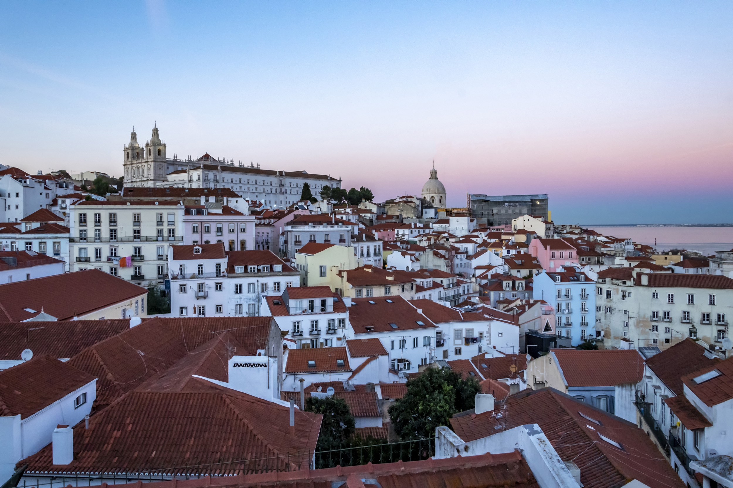 Pink Lisbon