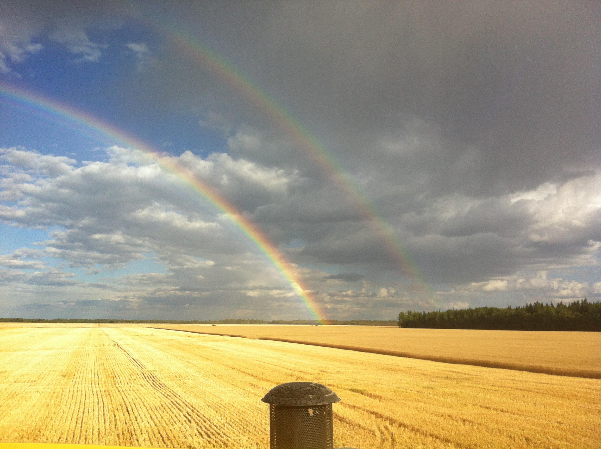 IMG_4918_rainbow_harv_field.JPG