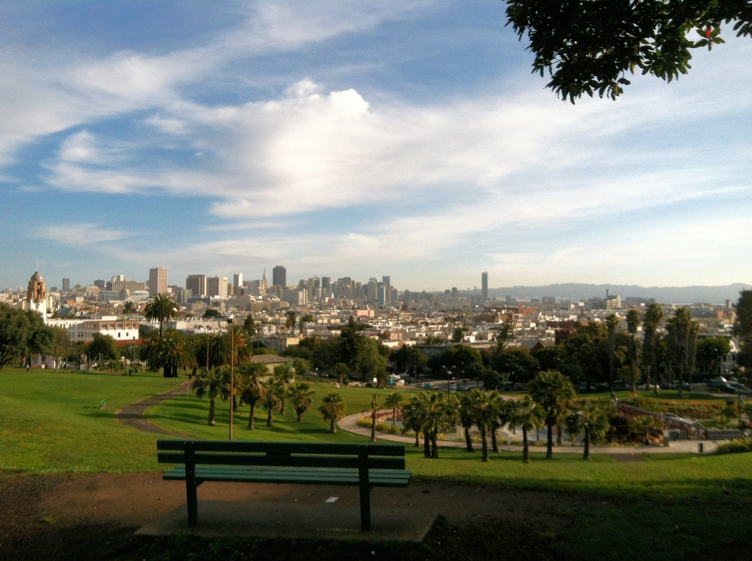 Vista of downtown from DOlores Park, the Mission District