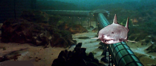 jaws3_04_edit1.png