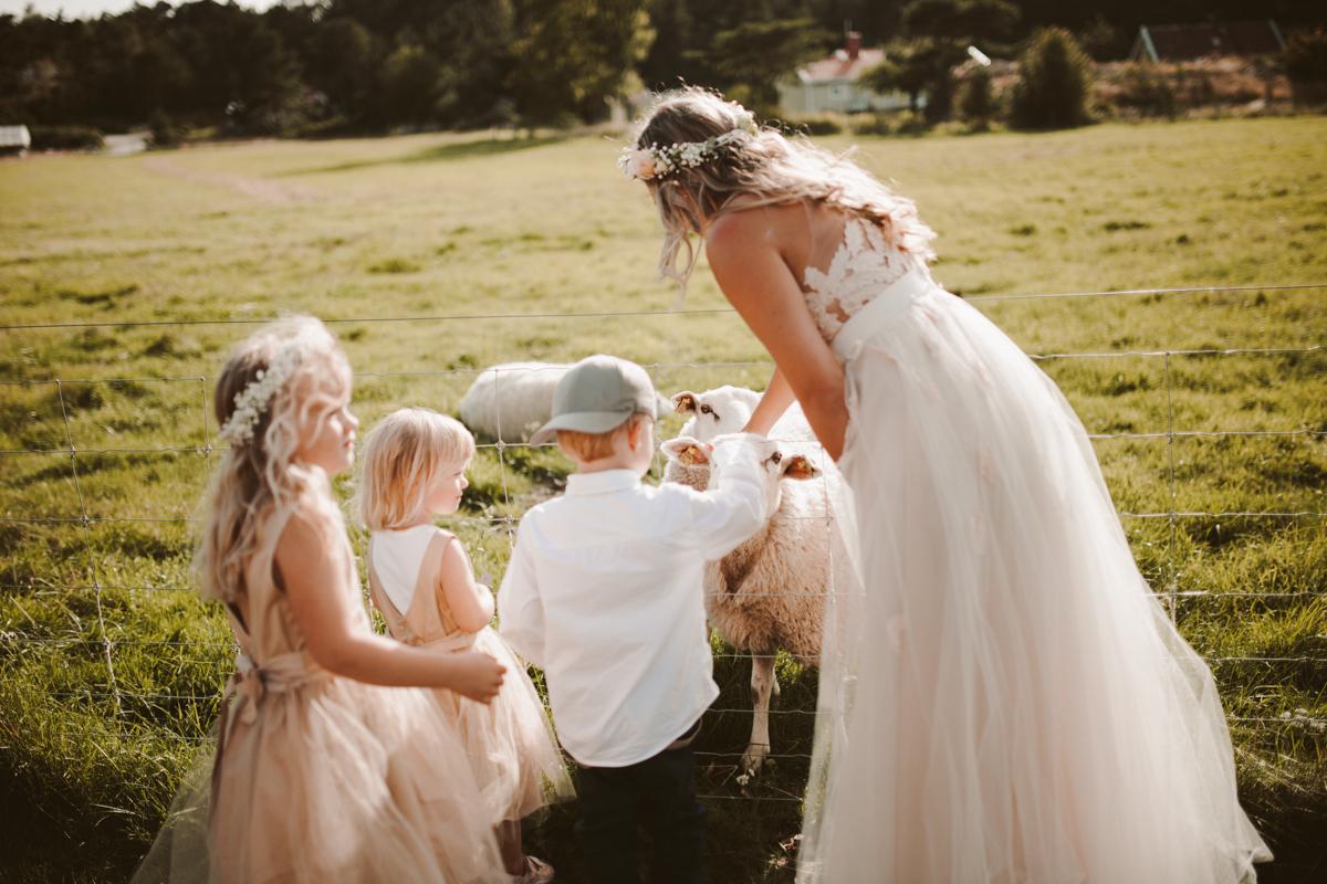 sweden wedding photos-96.jpg